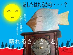 Mizuhonok88