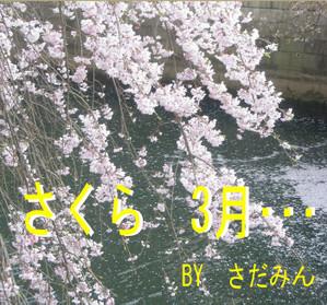 Sakurasaku1_2