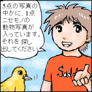 Cocolog_oekaki_2010_07_09_19_18
